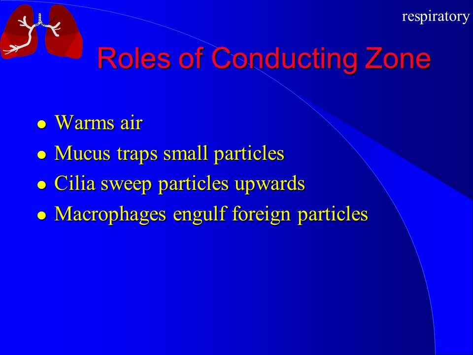 Roles of Conducting Zone