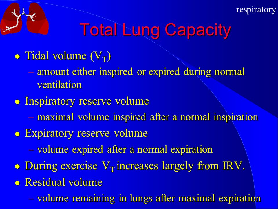 Total Lung Capacity Tidal volume (VT) Inspiratory reserve volume