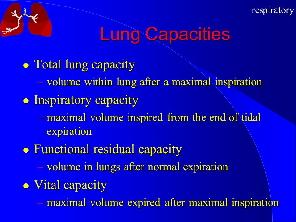 Lung Capacities Total lung capacity Inspiratory capacity