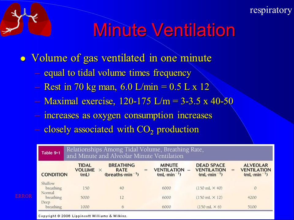 Minute Ventilation Volume of gas ventilated in one minute