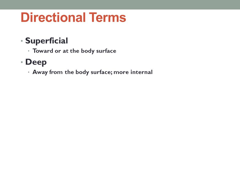 Directional Terms Superficial Deep Toward or at the body surface