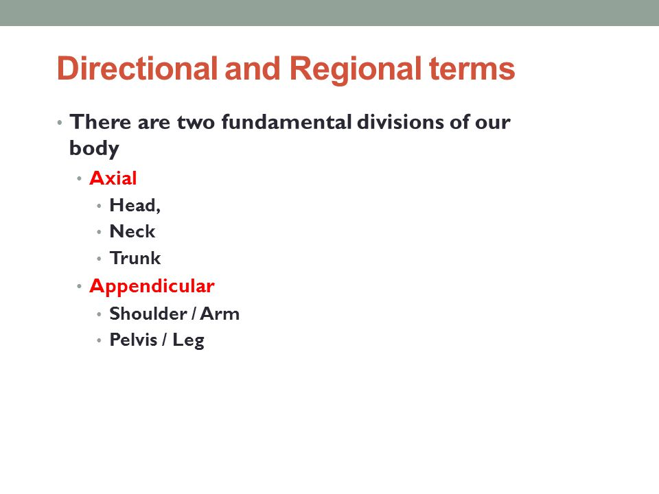 Directional and Regional terms