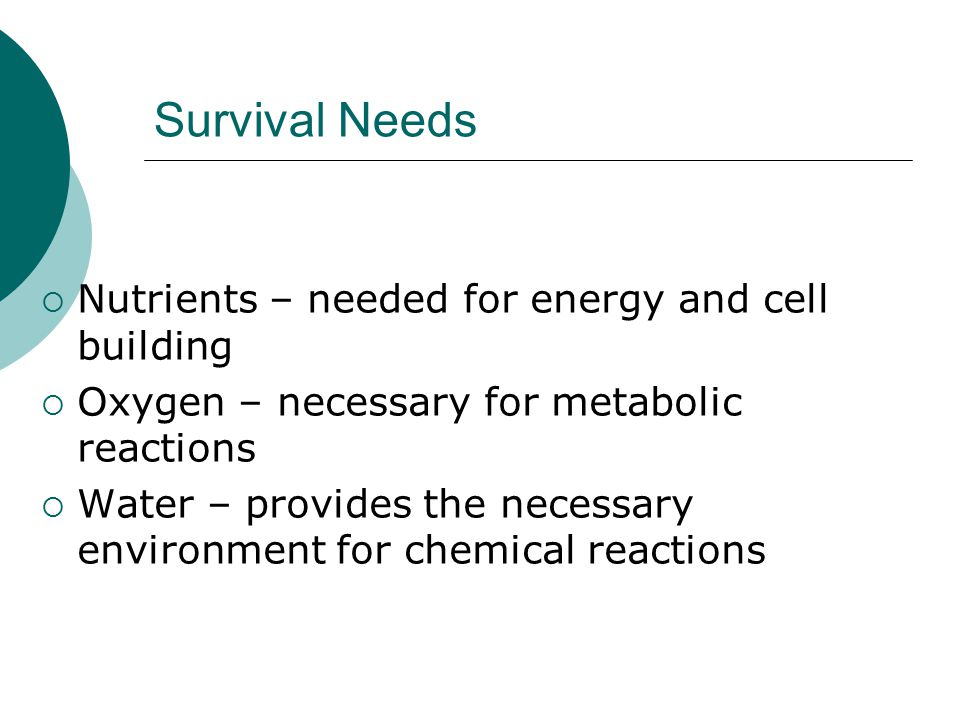 Survival Needs Nutrients – needed for energy and cell building