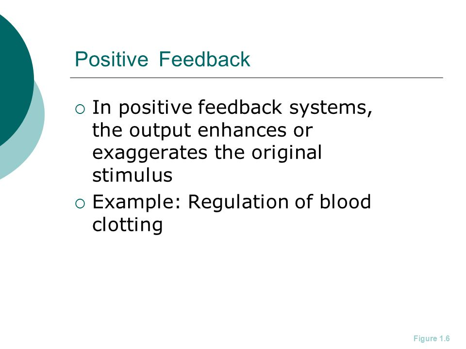 Positive Feedback In positive feedback systems, the output enhances or exaggerates the original stimulus.