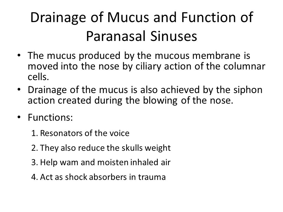 Drainage of Mucus and Function of Paranasal Sinuses