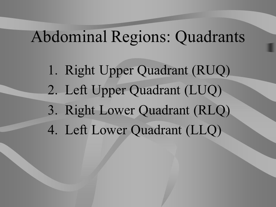 Abdominal Regions: Quadrants