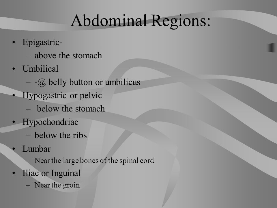 Abdominal Regions: Epigastric- above the stomach Umbilical
