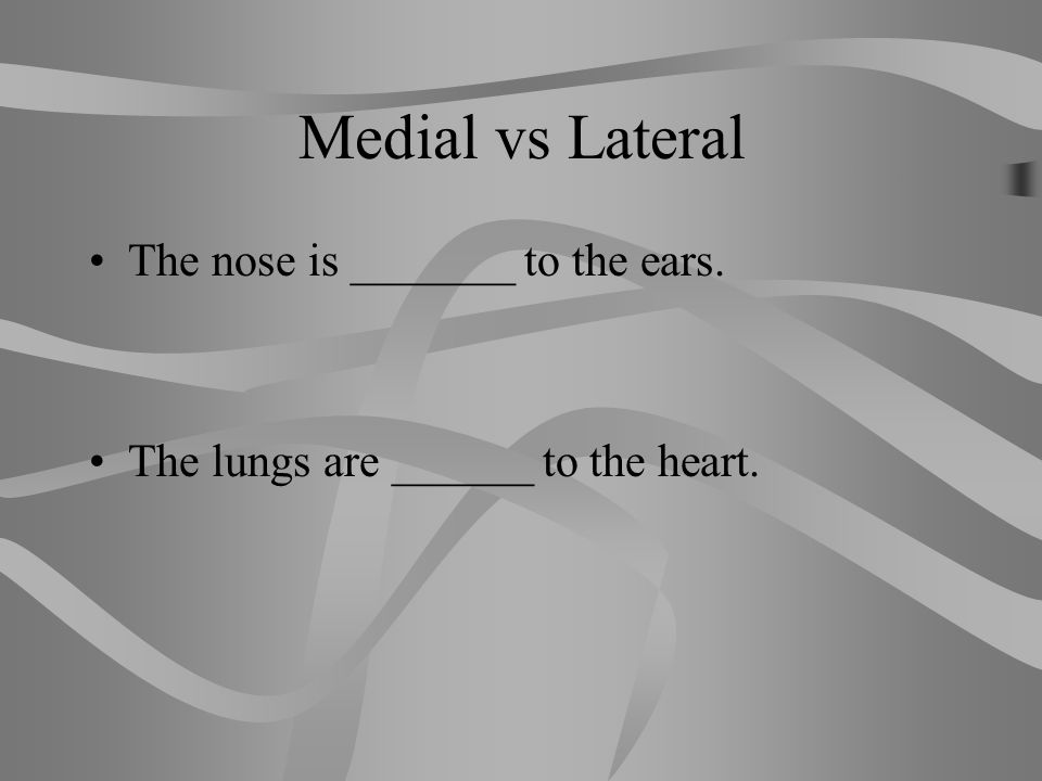 Medial vs Lateral The nose is _______ to the ears.