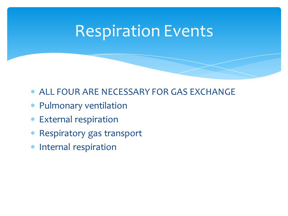 Respiration Events ALL FOUR ARE NECESSARY FOR GAS EXCHANGE
