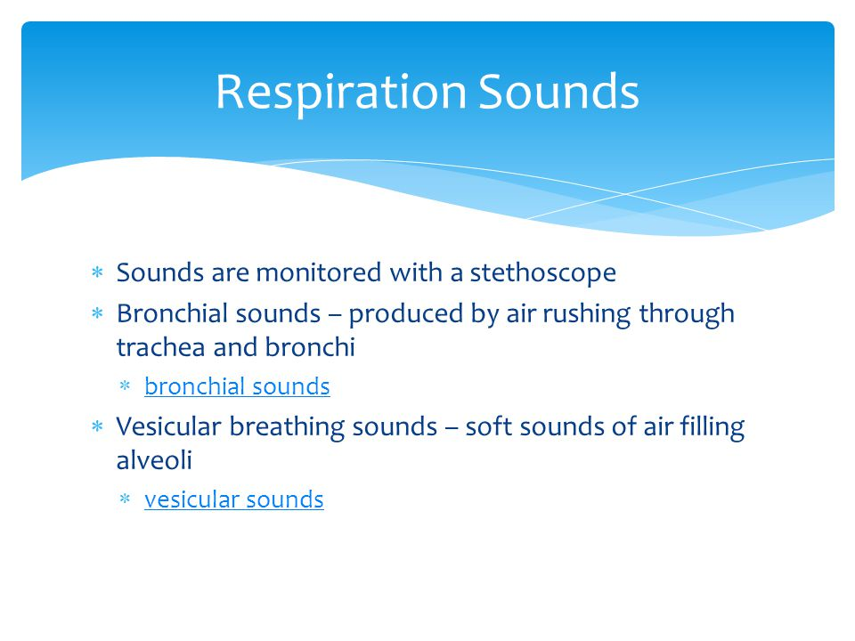 Respiration Sounds Sounds are monitored with a stethoscope