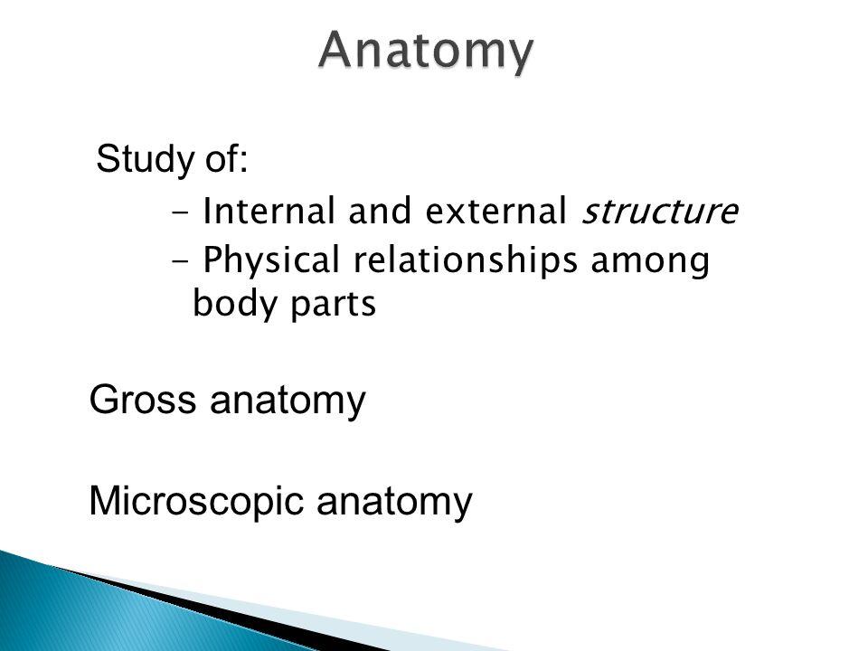 Anatomy Gross anatomy Microscopic anatomy Study of: