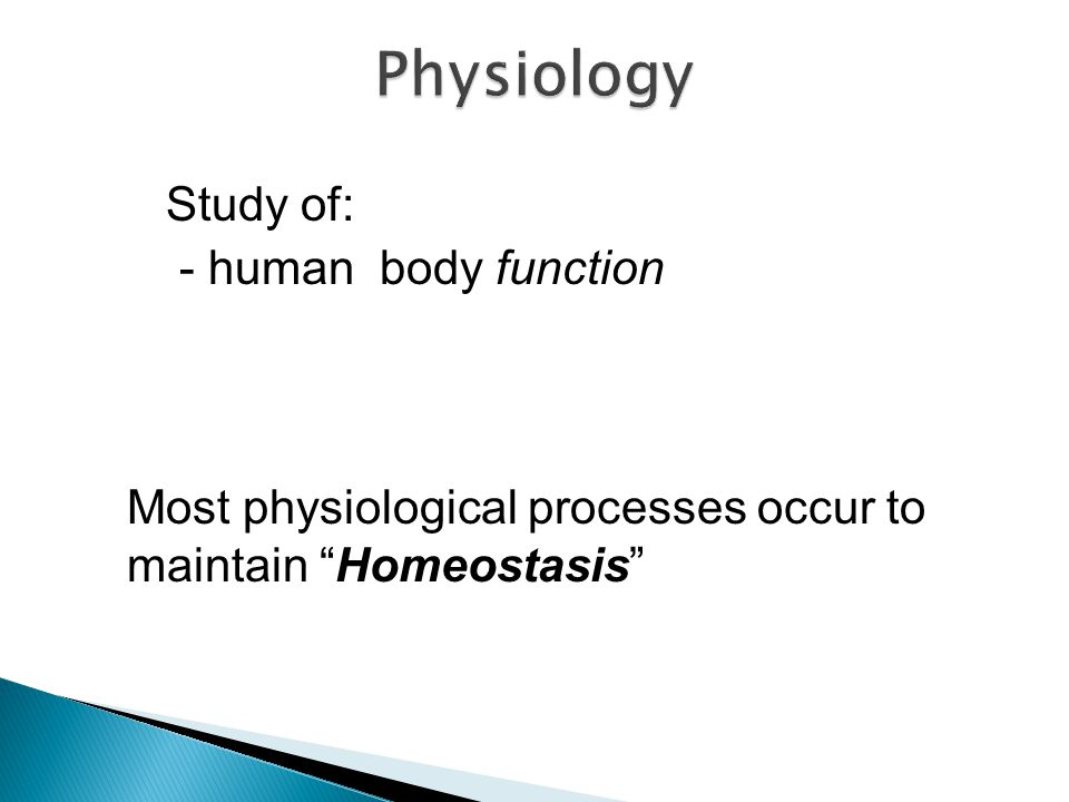 Physiology Study of: - human body function