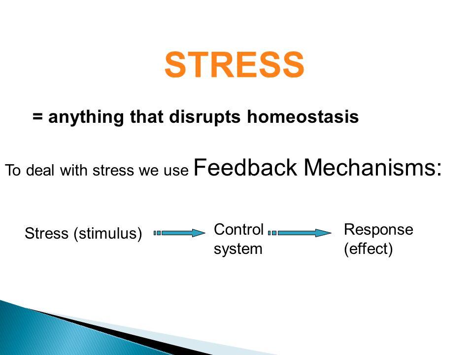 STRESS = anything that disrupts homeostasis