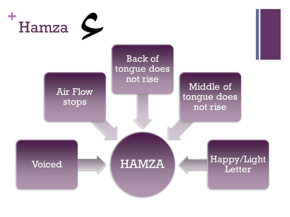 Hamza HAMZA Back of tongue does not rise