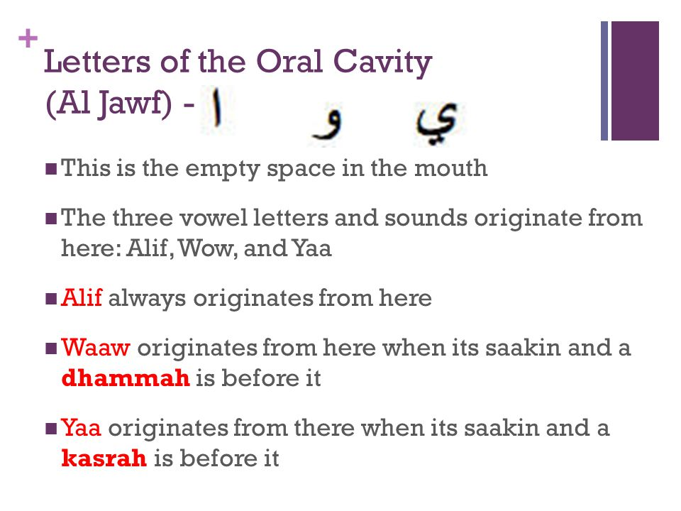 Letters of the Oral Cavity (Al Jawf) -