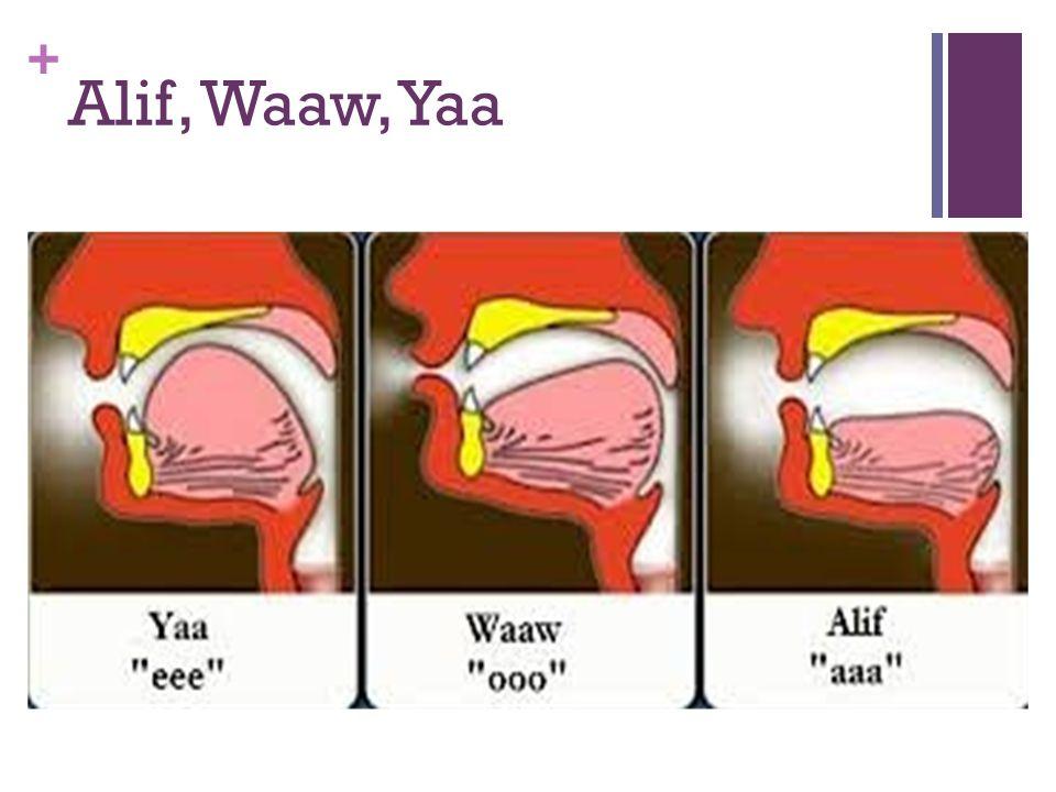Alif, Waaw, Yaa