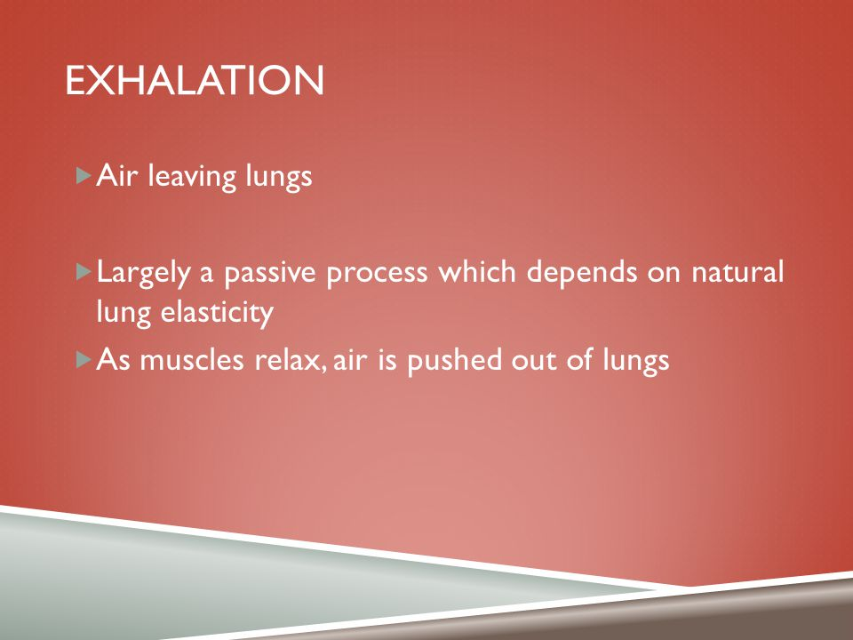 exhalation Air leaving lungs