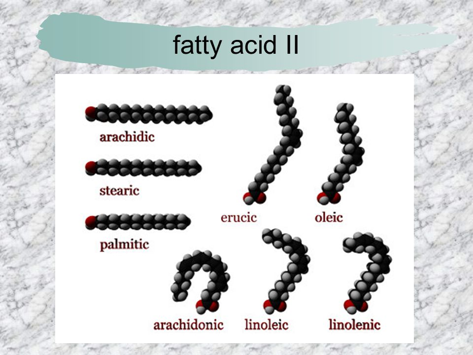 fatty acid II
