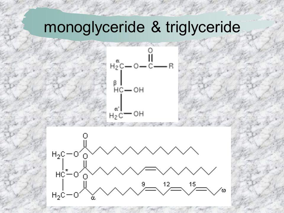 monoglyceride & triglyceride