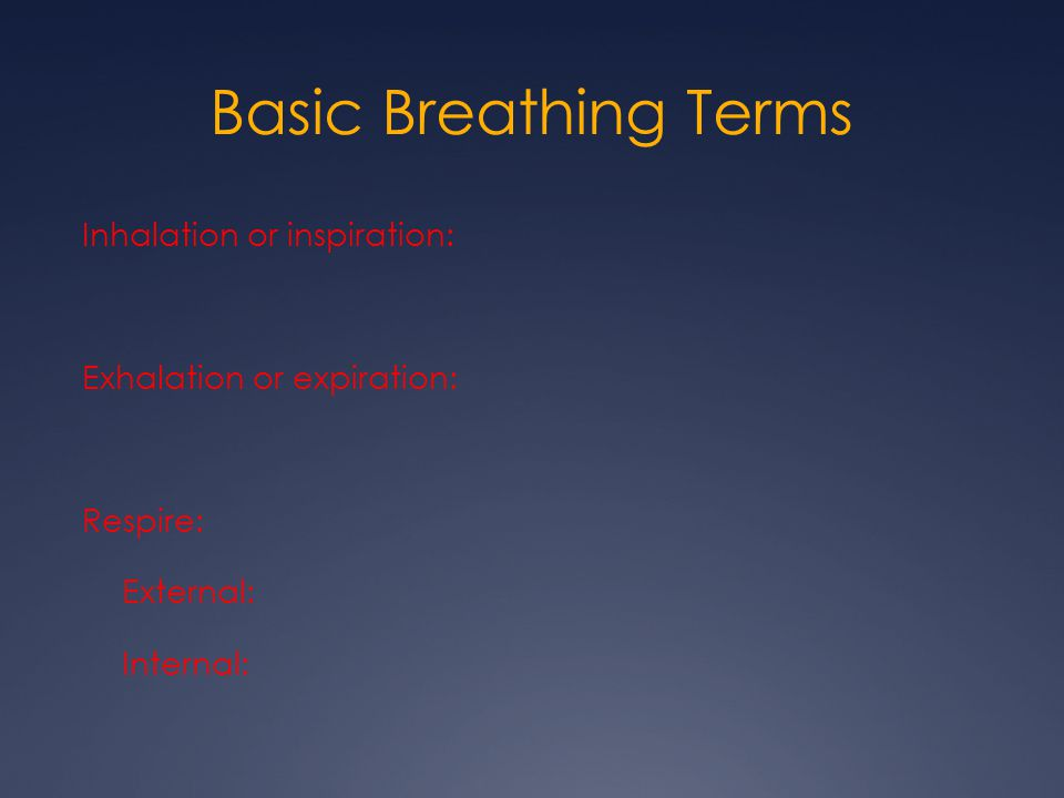 Basic Breathing Terms Inhalation or inspiration: Exhalation or expiration: Respire: External: Internal: