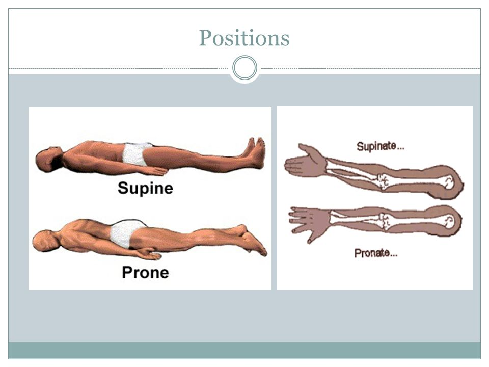 Positions Also describe lateral Decubitus – lying down