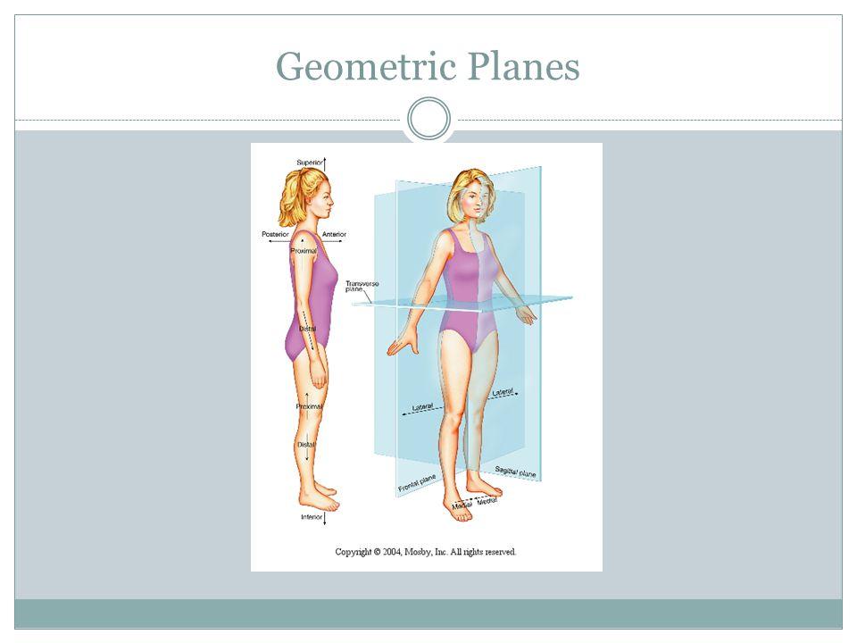 Geometric Planes