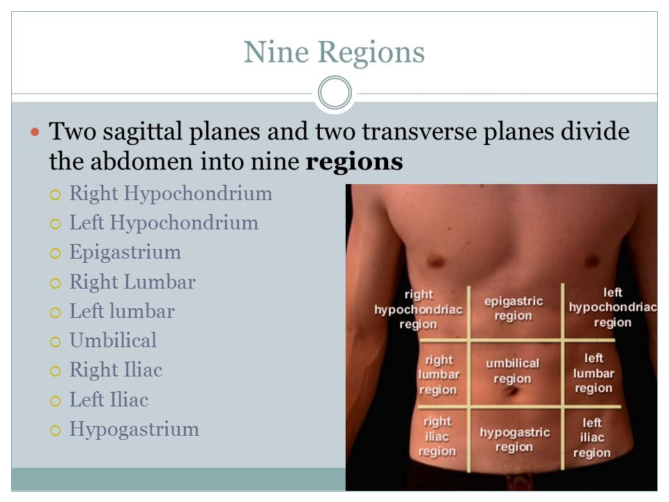 Nine Regions Two sagittal planes and two transverse planes divide the abdomen into nine regions. Right Hypochondrium.