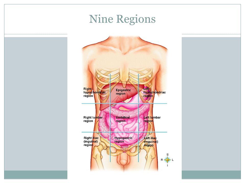 Nine Regions