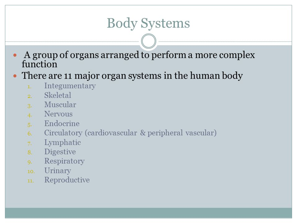 Body Systems A group of organs arranged to perform a more complex function. There are 11 major organ systems in the human body.