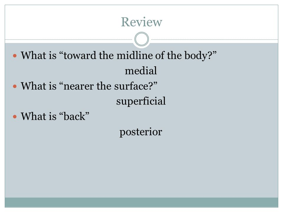 Review What is toward the midline of the body medial