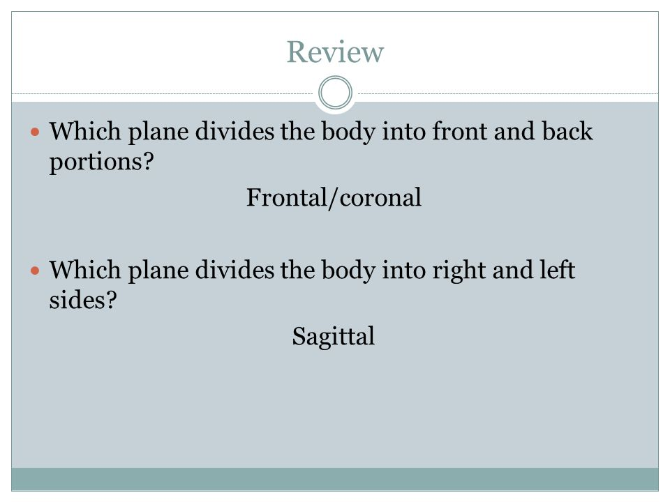 Review Which plane divides the body into front and back portions
