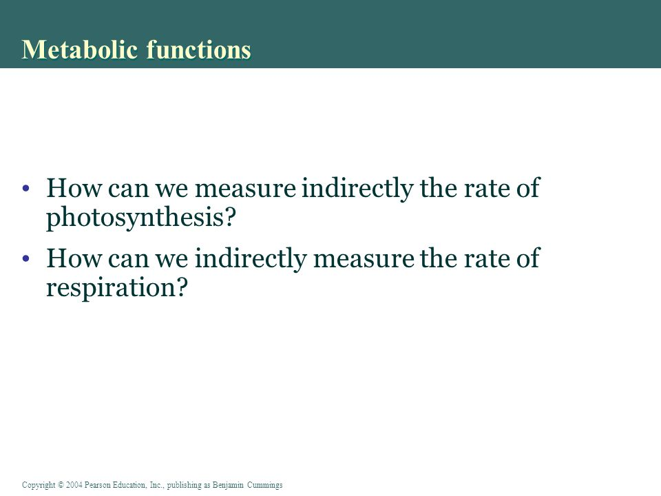 Metabolic functions How can we measure indirectly the rate of photosynthesis.