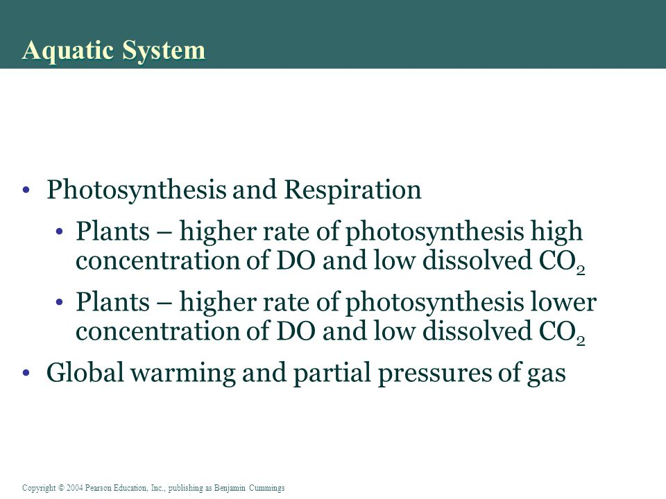 Aquatic System Photosynthesis and Respiration