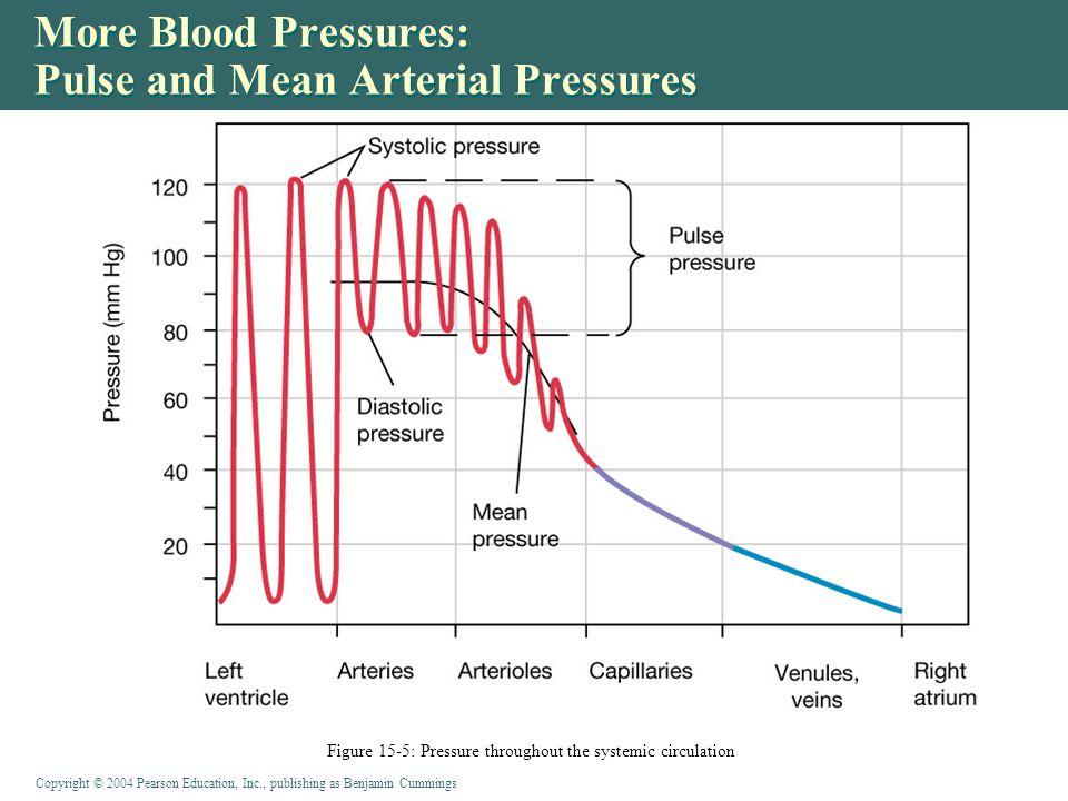 More Blood Pressures: Pulse and Mean Arterial Pressures