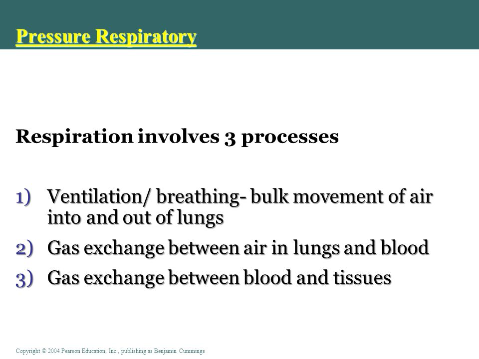 Pressure Respiratory Respiration involves 3 processes