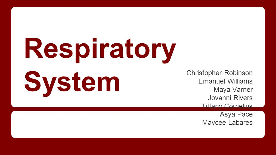 Respiratory System Christopher Robinson Emanuel Williams Maya Varner