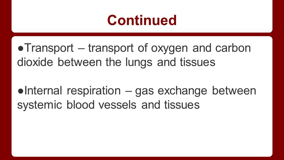 Continued ●Transport – transport of oxygen and carbon dioxide between the lungs and tissues.