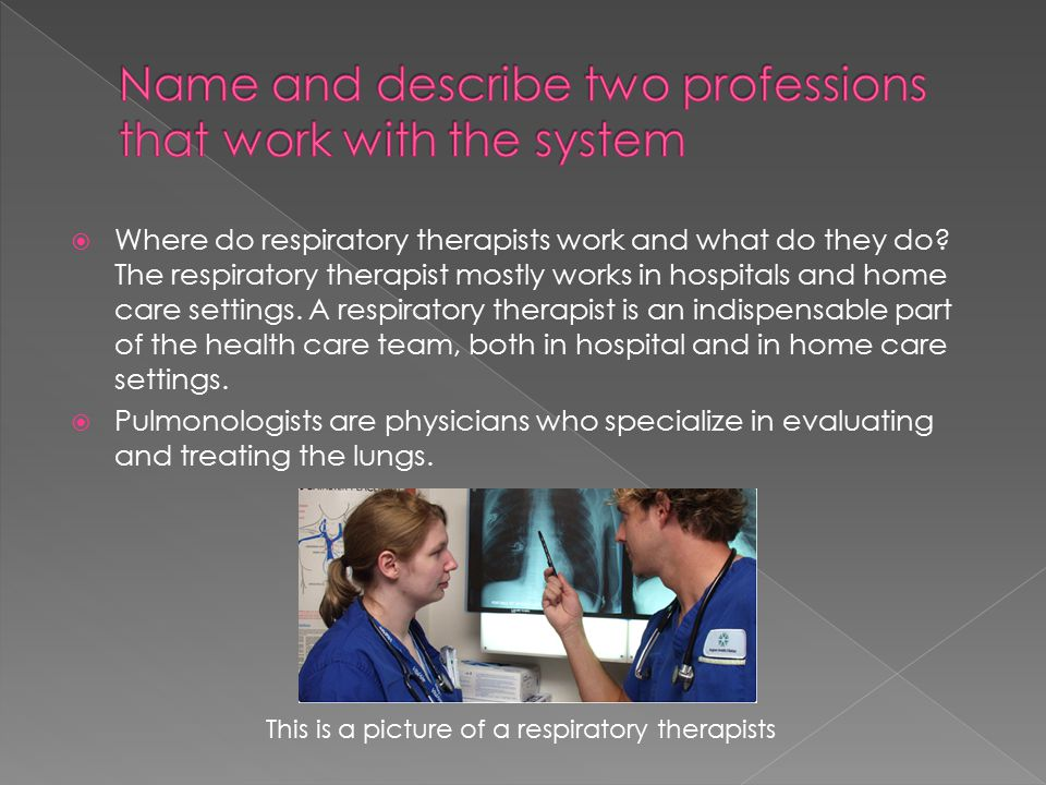 Name and describe two professions that work with the system