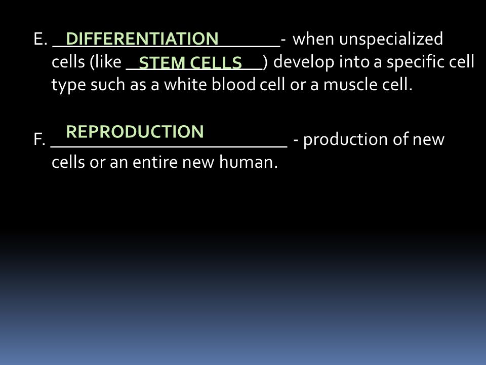 E. _________________________- when unspecialized cells (like _______________) develop into a specific cell type such as a white blood cell or a muscle cell. F. __________________________ - production of new cells or an entire new human.
