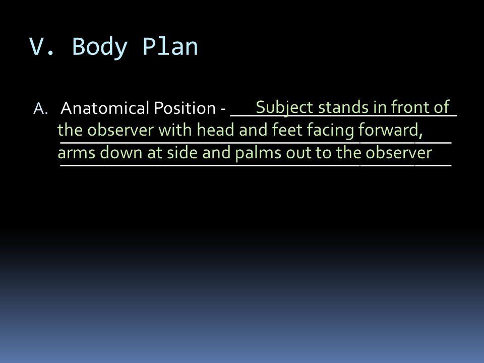 V. Body Plan Anatomical Position - _________________________
