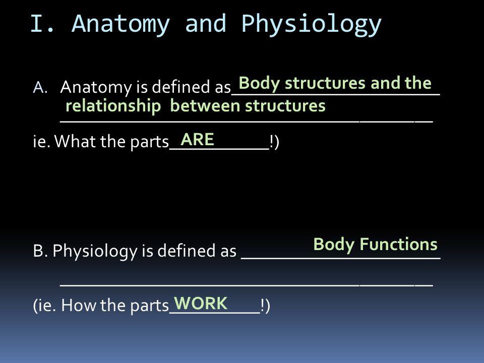 I. Anatomy and Physiology