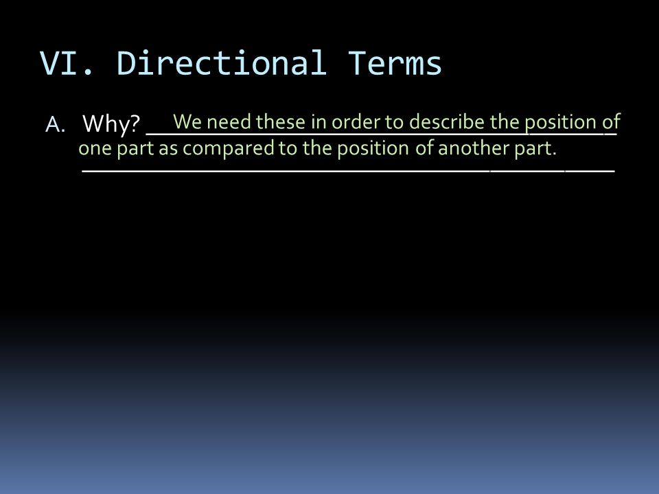 VI. Directional Terms Why ______________________________________