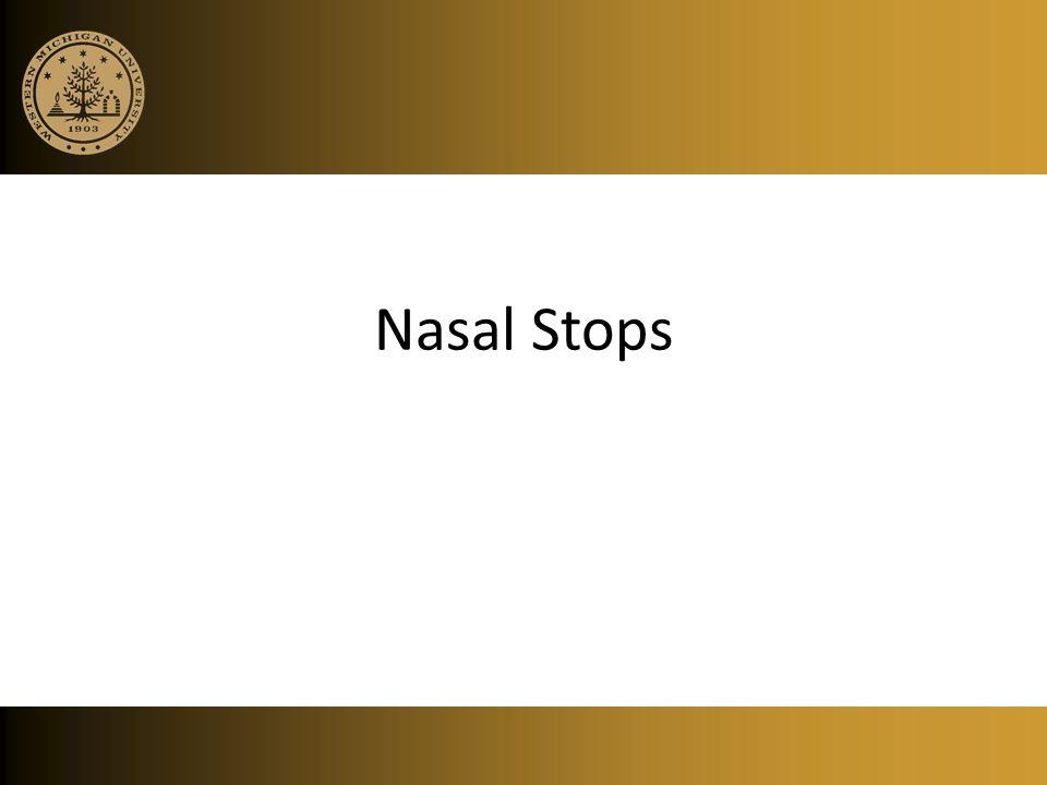 Nasal Stops