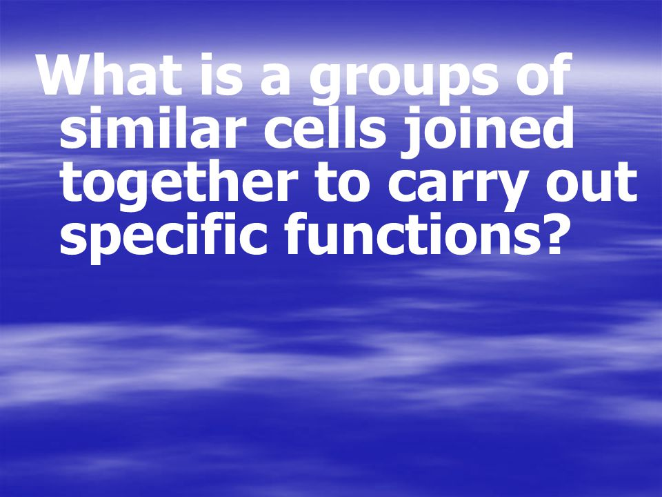 What is a groups of similar cells joined together to carry out specific functions