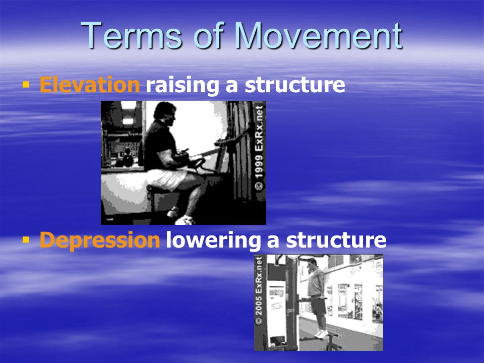 Terms of Movement Elevation raising a structure