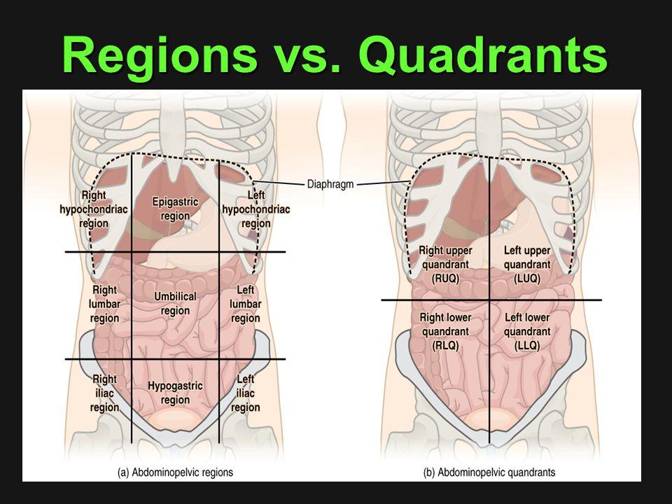 Regions vs. Quadrants