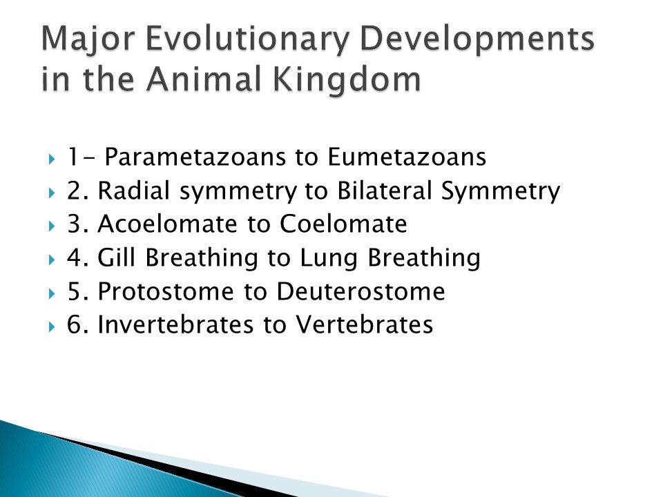 Major Evolutionary Developments in the Animal Kingdom