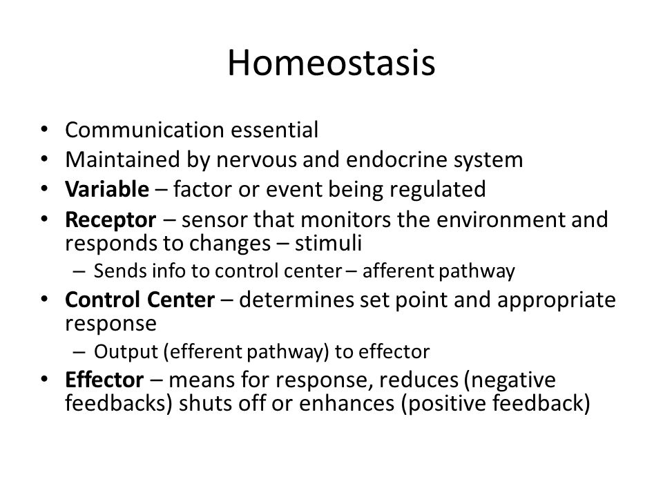 Homeostasis Communication essential
