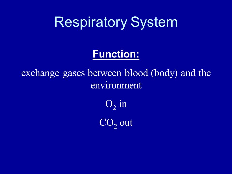 exchange gases between blood (body) and the environment