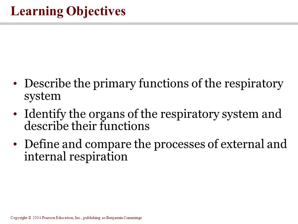 Learning Objectives Describe the primary functions of the respiratory system.
